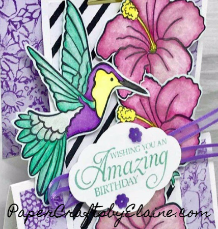 Humming birds stamp sets, Humming Along stamp sets, greeting cards, all occasion cards,