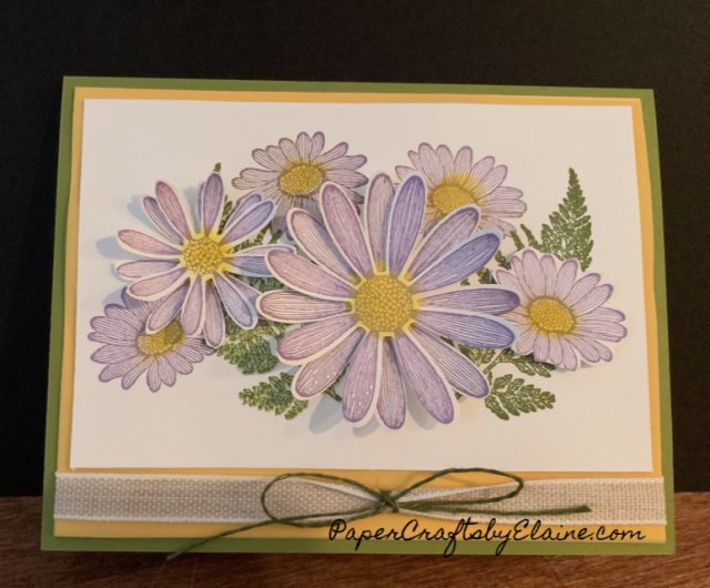 greeting cards, all occasion cards, daisy lane bundle, daisy punch. handmade cards, greeting cards, Friendship cards, home decor projects.