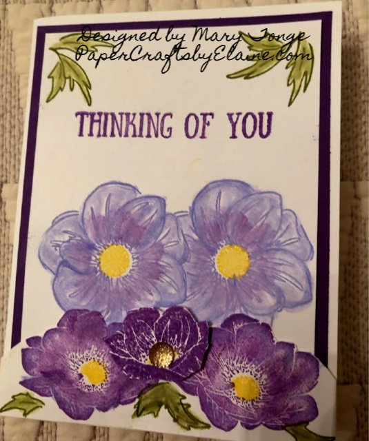 Floral Essence Stamp Set, Stampin' Up floral Essence, Perennial Essence suite, greeting cards, handmade cares, homemade cards, fun cards for July,