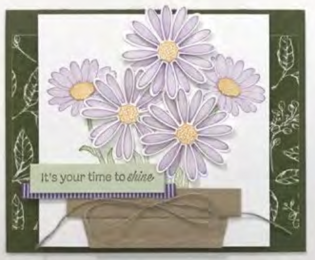 Daisy Lane Bundle, Greeting cards, all occasion cards,  daisy cards,