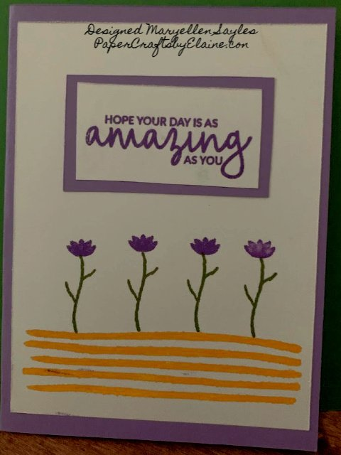 Greeting cards, handmade cards, cards for all occasion, Birthday cards, #simplestamping, Maryellen Sayles, Paper Crafts Design team, amazing cards,