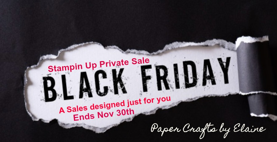 ONLY From PaperCraftsbyElaine.com   Black Friday Sale from Stampin Up. Thank Your for supporting Paper Crafts by Elaine, allow me to offer you a Black Friday Sale never offered by Stampin\' Up. To get this Special Price you will need to email your order to Elaine@PaperCraftsbyElaine.com.