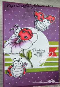 Peaceful Poppies DSP, Little LadyBug stamp set, greeting cards, LadyBug, handmade greeting cards, greeting cards, quick and easy greeting cards, stampin fun