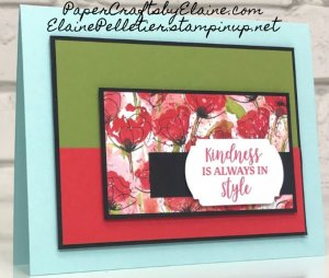 Popping with Peaceful Poppies DSP, greeting cards, handmade greeting cards, easy handmade greeting cards, Papercraftsbyelaine.com, Birthday cards,