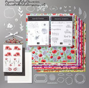 Peaceful poppies suite, join stampin up, be a Stampin' Up demonstrator, greeting cards, home business, work from home, earn extra money from home., Direct Sales opportunities,