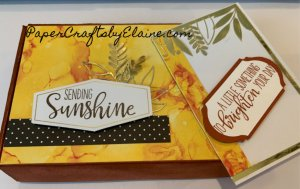 June Paper Pumpkin, Paper Pumpkin June 2020, Paper Pumpkin June 2020 alternative, monthly craft kit, Stampin' Up monthly craft kit,